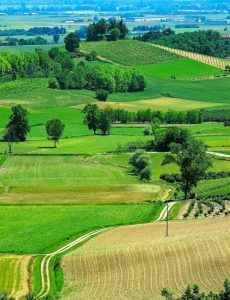 3D Printing in Agriculture