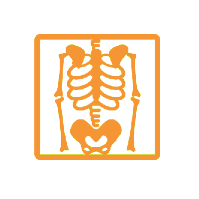 orange skeleton